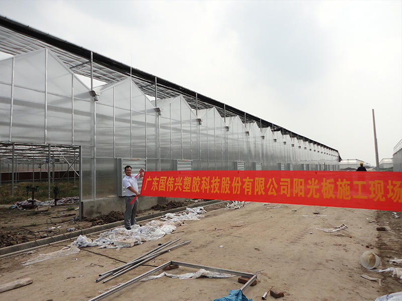 Tropical fruit green house with solid polycarbonate sheets wall and roof