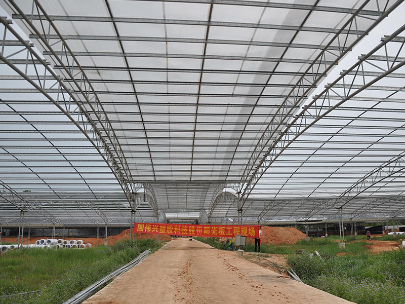 0.6mm thickness clear polycarbonate sheets greenhouse in North China Government's project